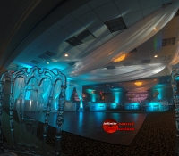 Wedding Decor, Ceiling Draping , Up Lighting